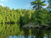 Ontario Nature Scenery Print by Oleksiy Maksymenko