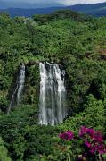 Ali Photos - Opaekaa Falls by Ali ONeal - Printscapes