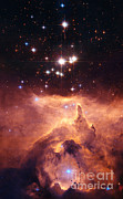 Component Photos - Open Cluster Pismis by Nasa