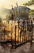 Iron Gate Posters - Open Iron Gate to Grave Poster by Jill Battaglia
