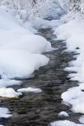 Snow-covered Landscape Posters - Open Running Creek With Snow Covered Poster by Michael Interisano