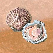 Sea Shell Originals - Open Scallop by Dominic White