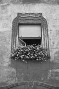 Romania Photos - Open window by Gabriela Insuratelu