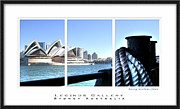 Seascape With A Boat Posters - Opera House Sydney Tryptych  Poster by Harry Neelam