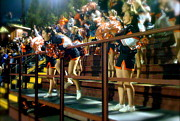 Cheerleaders Photos - Opponent High by Terry Zeyen