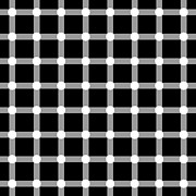 Grid Posters - Optical illusion The Grid Poster by Sumit Mehndiratta