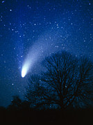 Comet Hale-bopp Framed Prints - Optical Image Of Comet Hale-bopp, 6 April 1997 Framed Print by Detlev Van Ravenswaay
