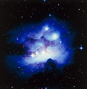 Reflection Nebula Posters - Optical Image Of The Nebula Ngc 1977 In Orion Poster by Celestial Image Co.