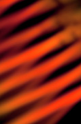 Shadow Effect Framed Prints - Orange And Red Slanted Lines Created By A Light Effect, Close-up, Defocused Framed Print by Halfdark