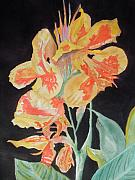 Canna Painting Posters - Orange And Yellow Canna Lily on Black Poster by Warren Thompson