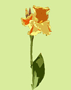 Interior Digital Art Digital Art - Orange and Yellow Flower by Karen Nicholson