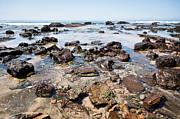 Paul Velgos - Orange County California Rock Formations