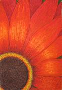 Detail Pastels - Orange flower by Stella Velka