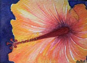 Artist Trading Cards Art - Orange Hibiscus by Lisa Bell