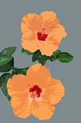 Tasteful Art Posters - Orange Hibiscus Twins Poster by Karen Nicholson