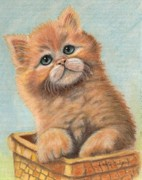 Basket Pastels Prints - Orange Kitten Print by Dorothy  Oakman