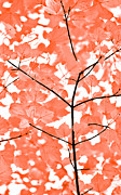 Peach And White Prints - Orange Leaves Melody  Print by Jennie Marie Schell