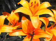 Perennials Painting Posters - Orange Lilies Poster by Elaine Plesser