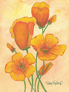 California Poppy Paintings - Orange Poppies by Terry Taylor
