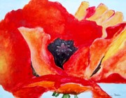 Singular Prints - Orange Poppy Print by Jamie Frier
