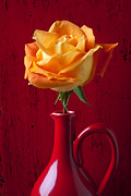 Orange Roses Posters - Orange Rose In Red Pitcher Poster by Garry Gay