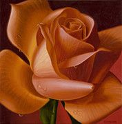 Hyper Posters - Orange Rose with Red Background Poster by Tony Chimento