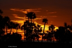 B A Bowen Photography Framed Prints - Orange Skies Framed Print by Barbara Bowen