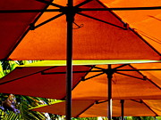 Sun Studios Prints - Orange Sliced Umbrellas Print by Karen Wiles