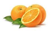 Sliced Originals - Orange Slices by Bailey Reed
