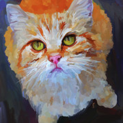 Orange Tabby Cat - Square Print by Jai Johnson