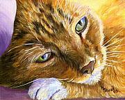 Orange Tabby Cat Framed Print Print by Mary Jo  Zorad