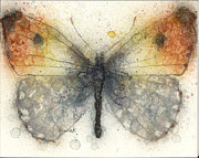 Drawing Painting Originals - Orange Tip Butterfly by Pam Ek