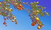 Robert Bissett - Orange Tree - Ojai