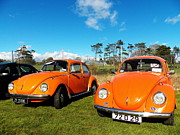 Pat  J Falvey - Orange Volkswagen Beetles