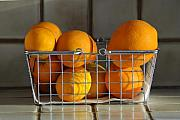 Fruit Still Life Metal Prints - Orangey Metal Print by Dan Holm
