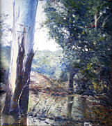 Orara River In Flood Nsw Australia 1998 Print by Enver Larney