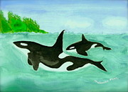 Orca Paintings - Orca by Johanne Peale