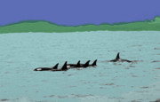 Pods Metal Prints - Orca Pod Metal Print by Al Bourassa
