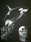 Whale Drawings Metal Prints - Orca Sillhouette Metal Print by Mayhem Mediums