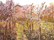 Orchards Painting Prints - Orchard Morning Print by David Lloyd Glover