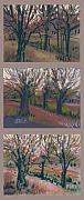 Orchard Drawings Framed Prints - Orchard Sunset Framed Print by Donald Maier