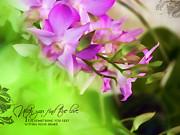 Dumindu Shanaka - orchid art