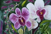 Greeting Cards Paintings - Orchid at AOS 2010 by Donna Walsh