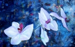 Exotic Painting Posters - Orchid Blue Poster by Laura Pierre-Louis