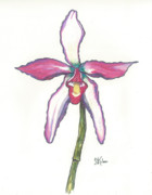 Character Pastels Prints - Orchid for Attie Print by Shelby Kube