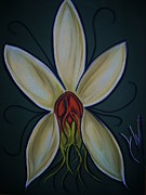 Rare Pastels - Orchid two by Gay Watters