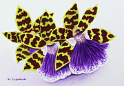 Bright Colors Art - Orchids - Jumping Jacks by Kerri Ligatich