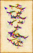 Orchids In Flight Print by Judi Bagwell
