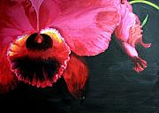 Large Format Originals - Orchids in the shadows - 1 by Edith Ritter
