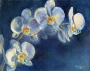 Potted Plant Paintings - Orchids by MaryAnn Cleary